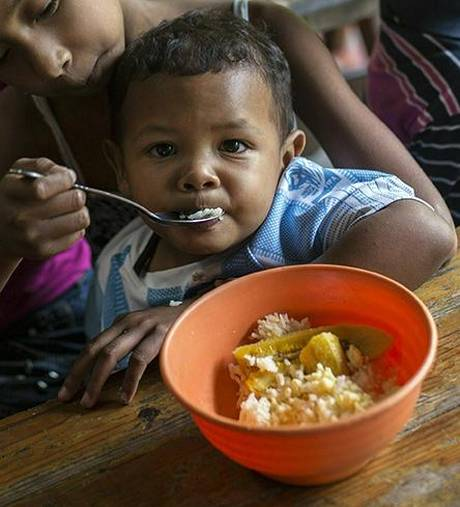 Adding egg or milk can reduce stunting in young children: study