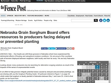 Nebraska Grain Sorghum Board offers resources to producers facing delayed or prevented planting