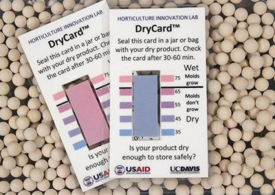 DryCard tech introduced to help sorghum farmers in Ghana