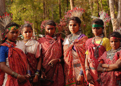 Lessons for Sustainability: Indigenous People and Forests Go Hand in Hand