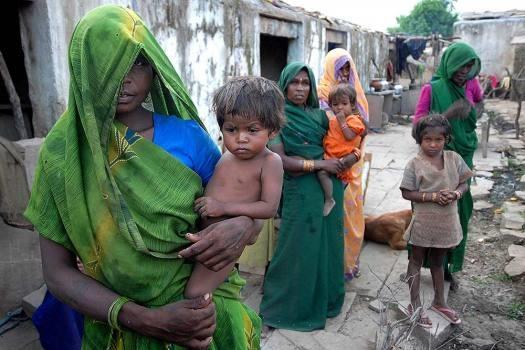 World Hunger Day: Overflowing Granaries, Starving Children