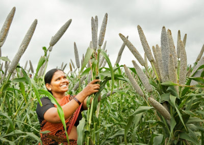 Millets, both major and minor, are crucial for better immunity