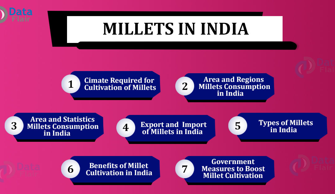 Millets in India – Ideal Conditions for Millets Cultivation