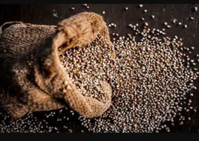 Benefits of Pearl Millet: Include bajra in your diet to rev up your immunity