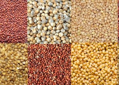 All you need to know about millets