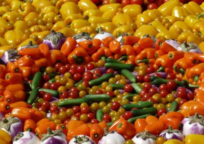 Diversity In Food Intake Curbs Malnutrition